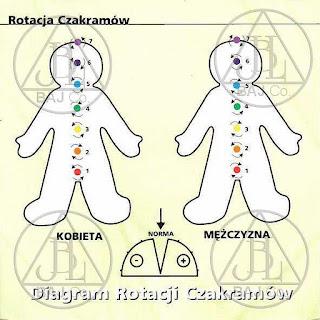 rotacja czakramow%2B%2528o%2Bzmienionym%2Brozmiarze%2529 - Energetyczna budowa człowieka - czakry