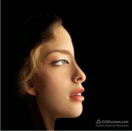 BrainBashers - Optical Illusions