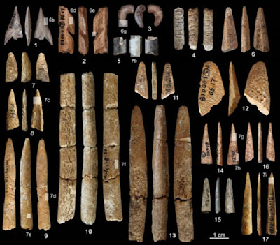 Palaeolithic bone tools found in South China