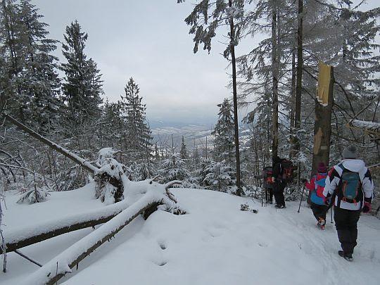 Zejście północnym stokiem z Lubonia Wielkiego.