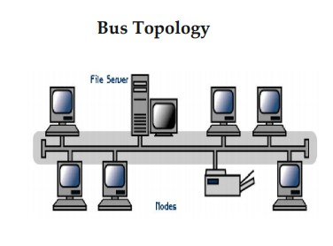 Bus Topology - Different Types of Network Topology