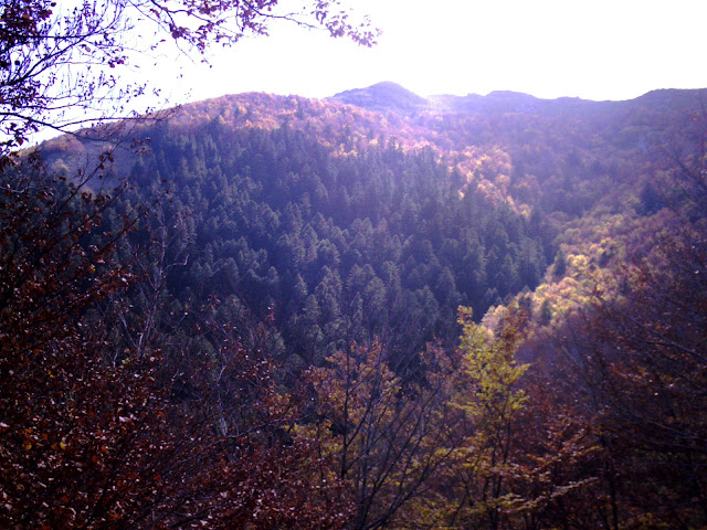 Santa Fe de Montseny a la tardor Fageda Parc natural del Montseny