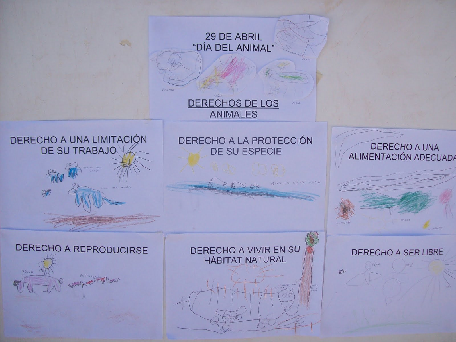 Mi sala amarilla 29 de abril d a del animal ideas para for Actividades de jardin de infantes
