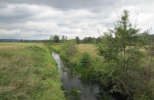 Rzeka Bobrza.