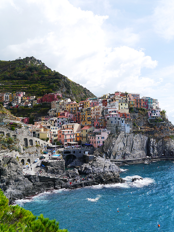 Colourful houses by the ocean in Manarola, Cinque Terre, Italy
