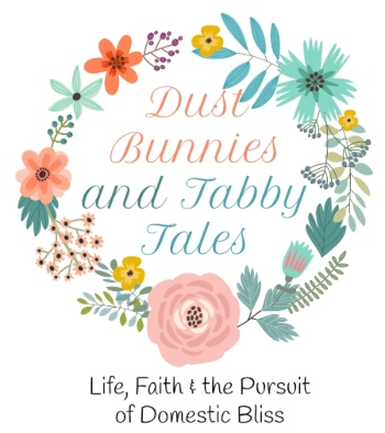 Dust Bunnies and Tabby Tales