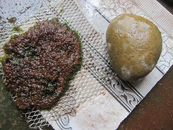 kinh nghiệm xử lý mini fiss thủy sinh bám đất lá cạn -  chuẩn bị đá cuội để buộc fiss