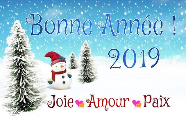 Bonne année 2019 et bonne santé