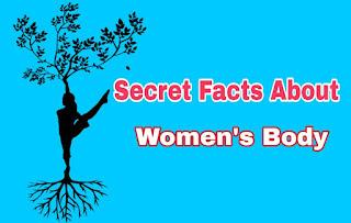 Secret-of-girl-bodys