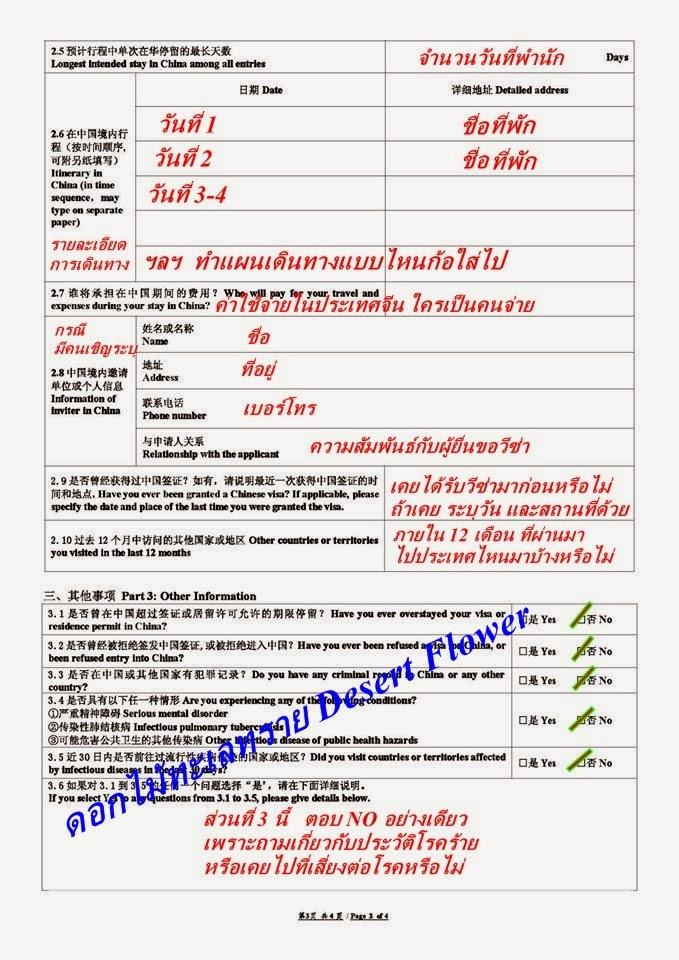 v3 Visa Application Form People S Republic Of China V on