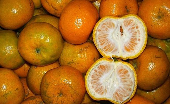 Macam Buah Yang Mengandung Vitamin C Tertinggi