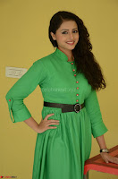 Geethanjali in Green Dress at Mixture Potlam Movie Pressmeet March 2017 033.JPG