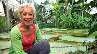 Carol Klein's Plant Odysseys - Waterlily ep.4