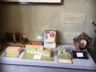 ピサ植物園の植物博物館の模型