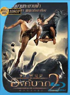 Ong Bak 2 La Leyenda Del Rey Elefante (2008) HD [1080p] Latino [Mega]dizonHD