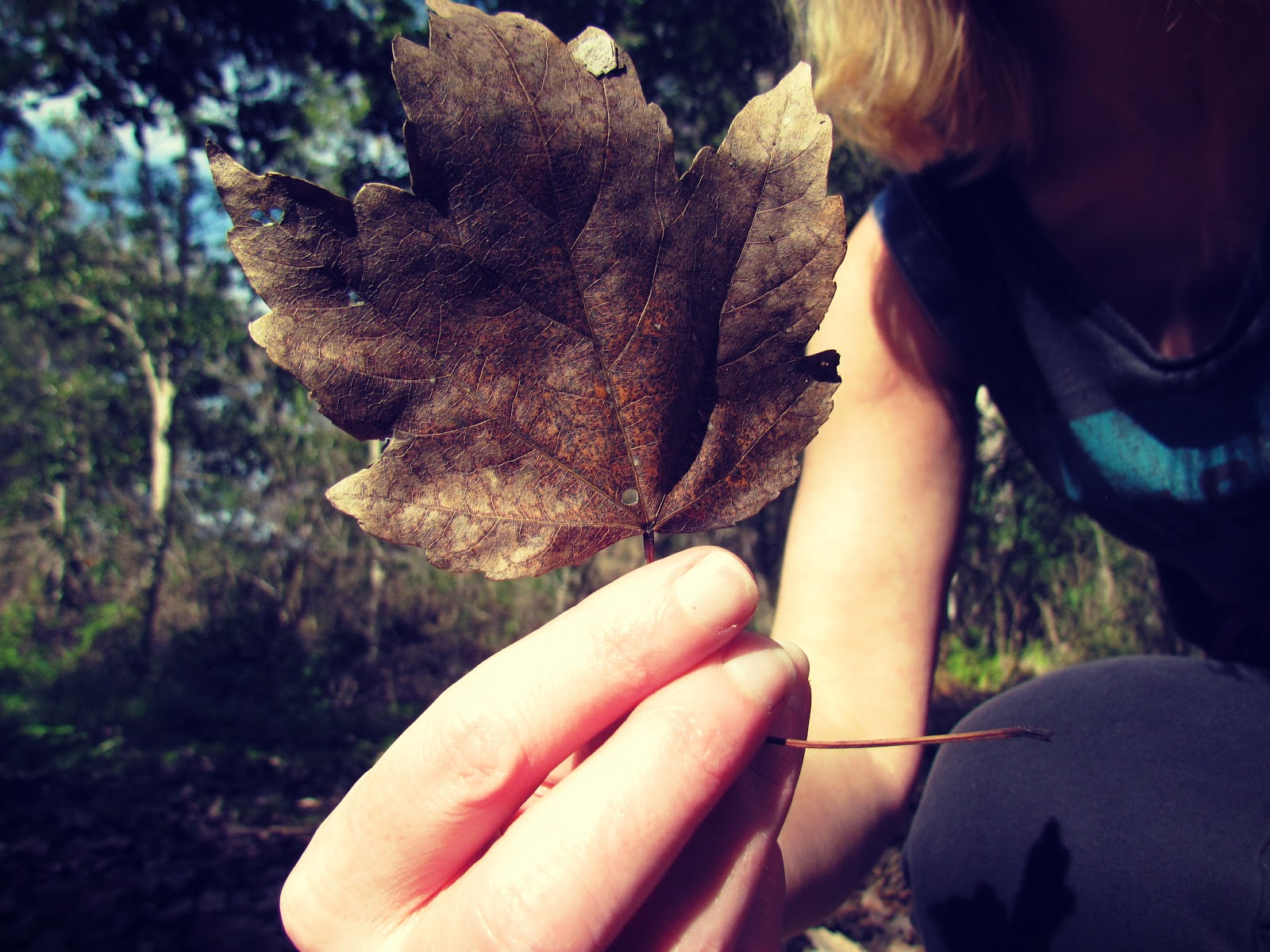 Outdoor Photoshoot + Rustic Crisp Fall Leaf in the Forest