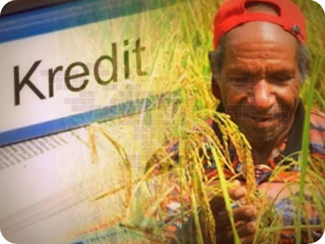 Dinilai Beresiko, Kredit Bank untuk Pertanian di Papua Minim