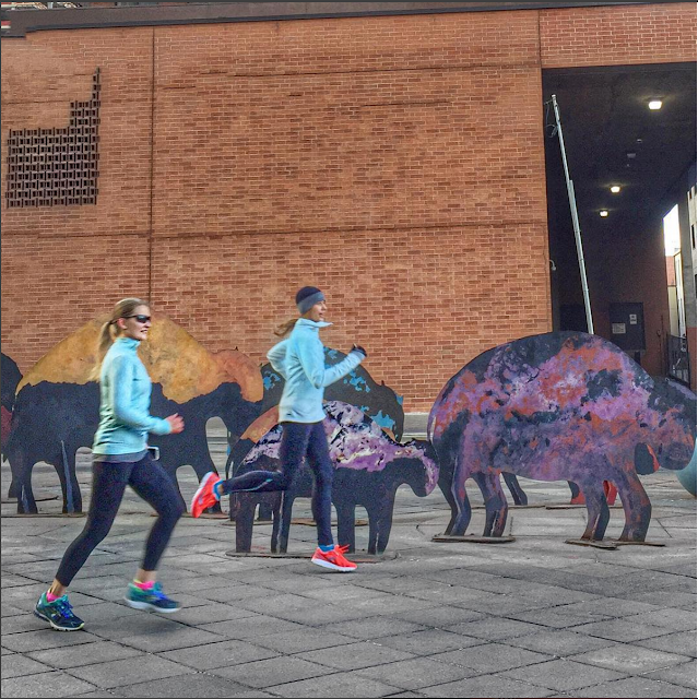 Running with the Buffalo