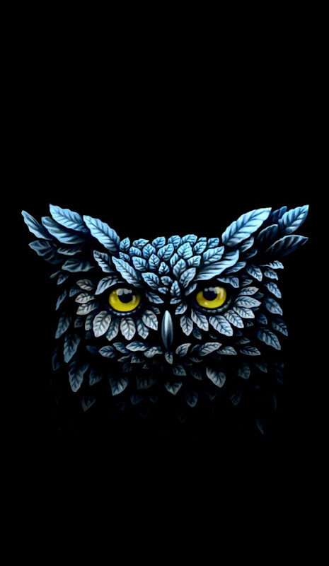 Iphone Wallpaper Owl Wallpapers New
