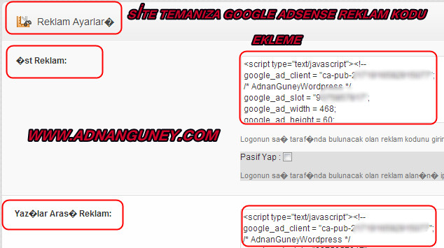 Sitene Google Adsense kodu nasıl eklenir