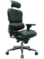 Eurotech Seating LE9ERG Ergohuman Chair at OfficeFurnitureDeals.com