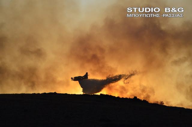 Μάχη με τις φλόγες στο Μετόχι Ερμιονίδας στην Αργολίδα - Στην κατασβεση επιχειρούν 7 εναέρια μέσα