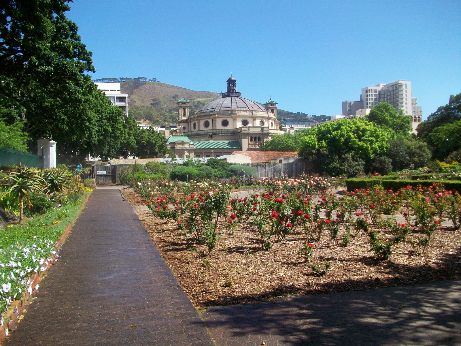 what to do in cape town on a sunday
