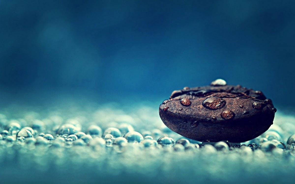 Coffee Beans Widescreen HD Wallpaper