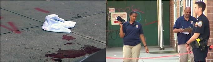 Asesinan en El Bronx un barbero dominicano en pleito a cuchilladas y otro hombre resulta grave