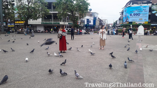 Tourist Attraction in Chiang Mai - Thailand