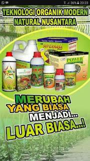 http://agenpupuknasa1.blogspot.com/2017/05/agen-pupuk-organik-nasa-bangka-timur.html