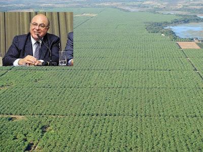 Carta:  Arnaldo Jardim aos Bananicultores