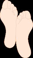 Sole (telapak)
