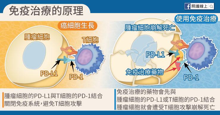 肺癌免疫治療的原理