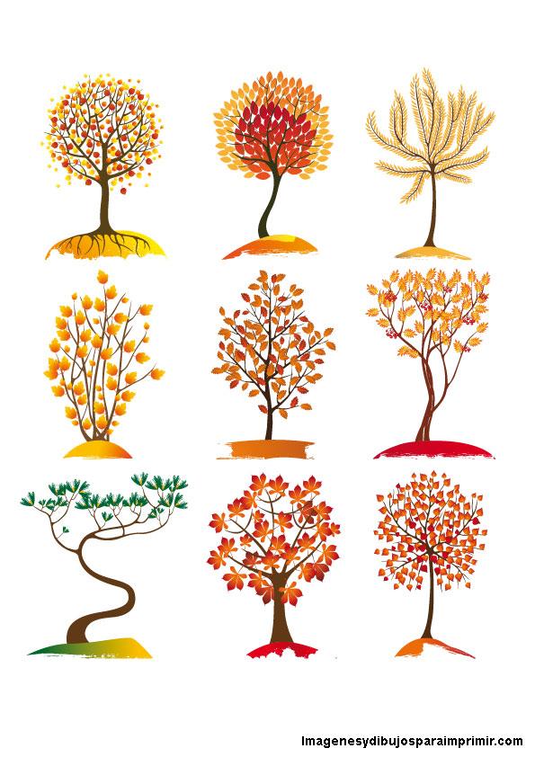 Arboles de oto o para imprimir gratis imagenes y dibujos for Arboles que no pierden sus hojas en otono