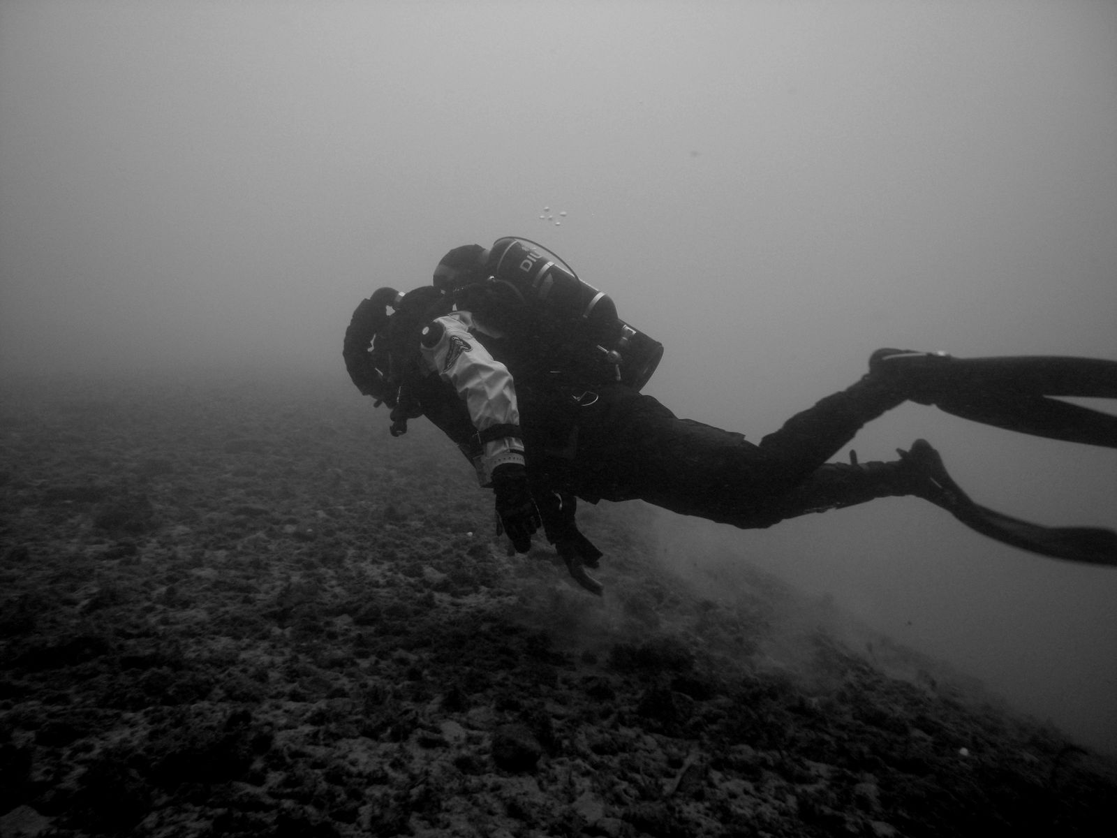 IMMERSIONE CON REBREATHER
