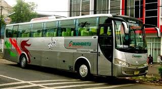 bus pariwisata buah batu