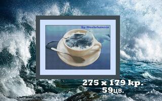 Море в чашке