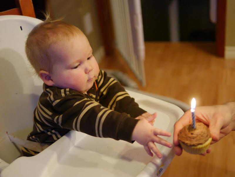 Happy 1st Birthday Teddy! – Backwoods Mama