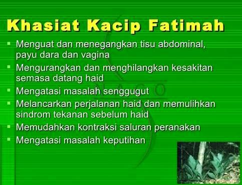 kacip Fatimah