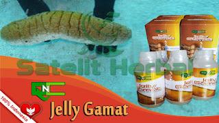 http://jellygamat79.blogspot.com