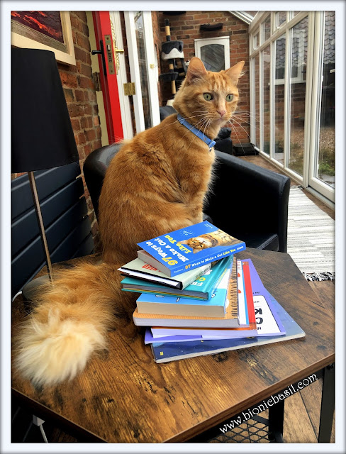 Fudge Guarding Amber's Books ©BionicBasil® Feline Fiction of Fridays #96