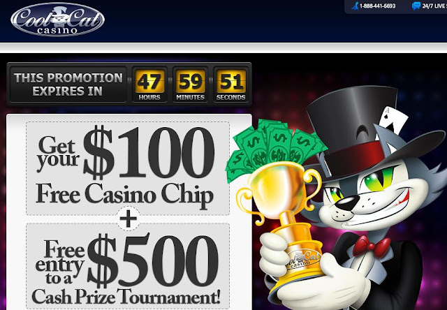 Casino cat cool coupon best casino games downloads