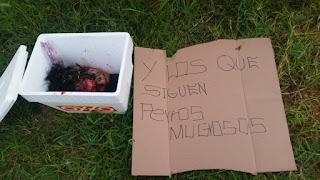 Fotos: Abandonan cabeza humana dentro de una hielera y con narcomensaje en Tonalá.