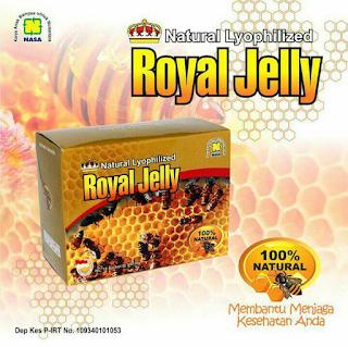 Paket Obat Stroke Royal Jelly Nasa