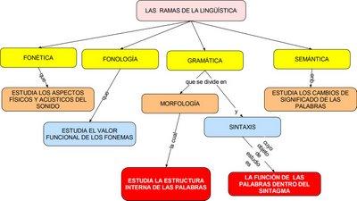 Lenguaje y comunicaci n ramas de la ling stica fonemas for Arquitectura que se estudia