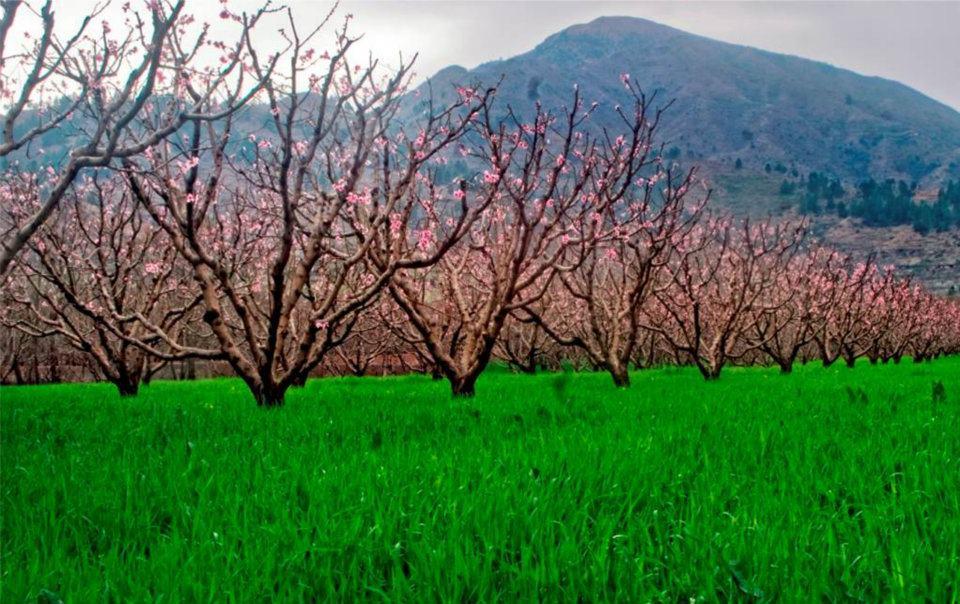 Lower swat valley ,Pakistan