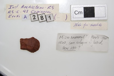 Flaked stone points raise questions about Brazilian prehistory