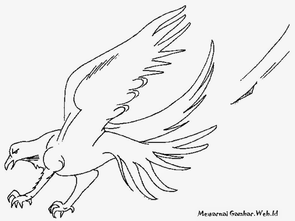 Eagle Kids Coloring Pages