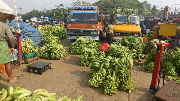 marche aux bananes thrissur kerala